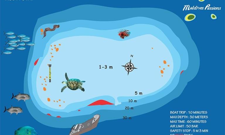 KUDA-GIRI-WRECK-diving-in-maldives-768x461