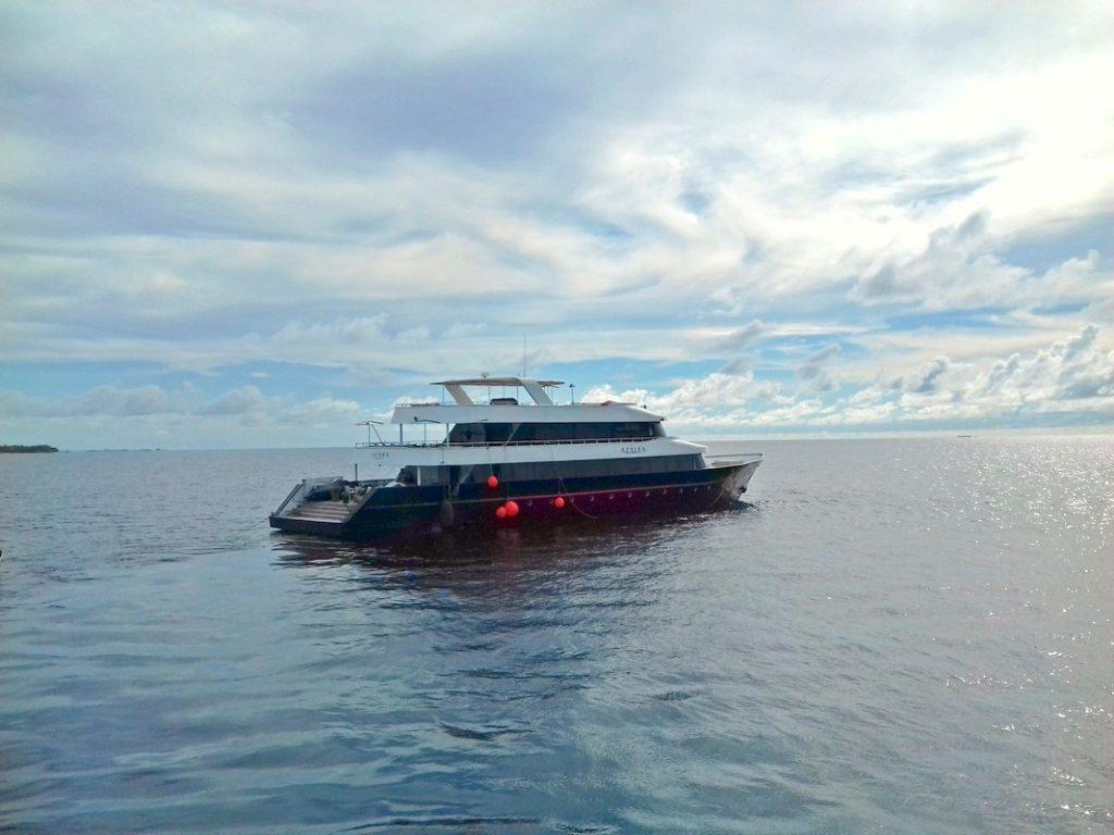 diving-in-maldives-liveaboard-1024x768