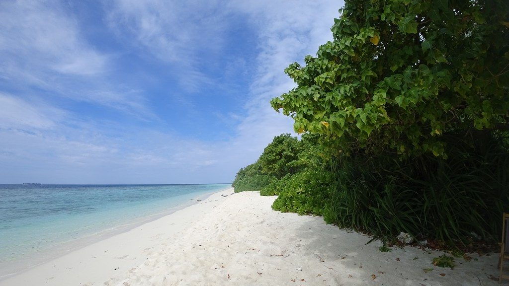 omadhoo-beach-area-1