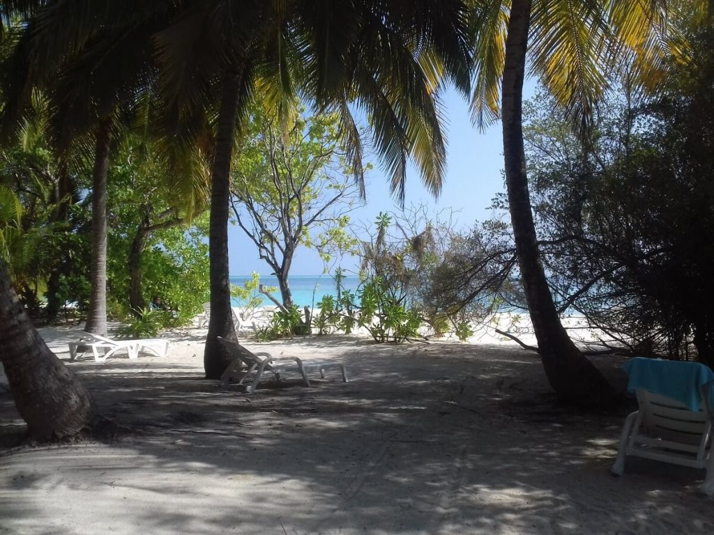 thinadhoo-shadow