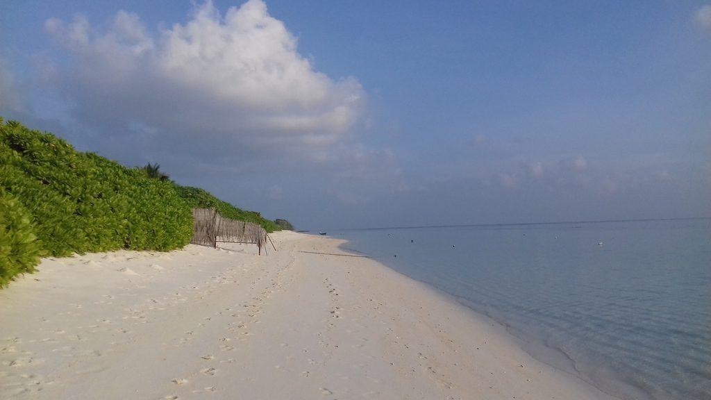 thoddoo-beach-area