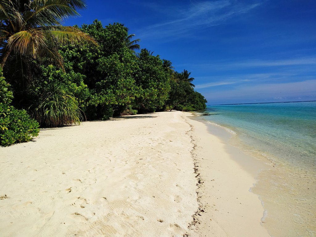 thoddoo-island-beach