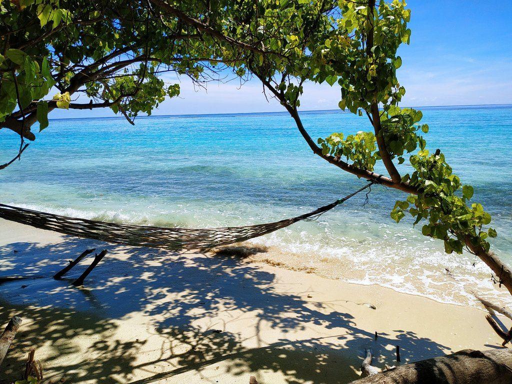thoddoo-island-hamacus