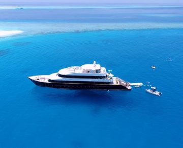 azalea-cruise-view