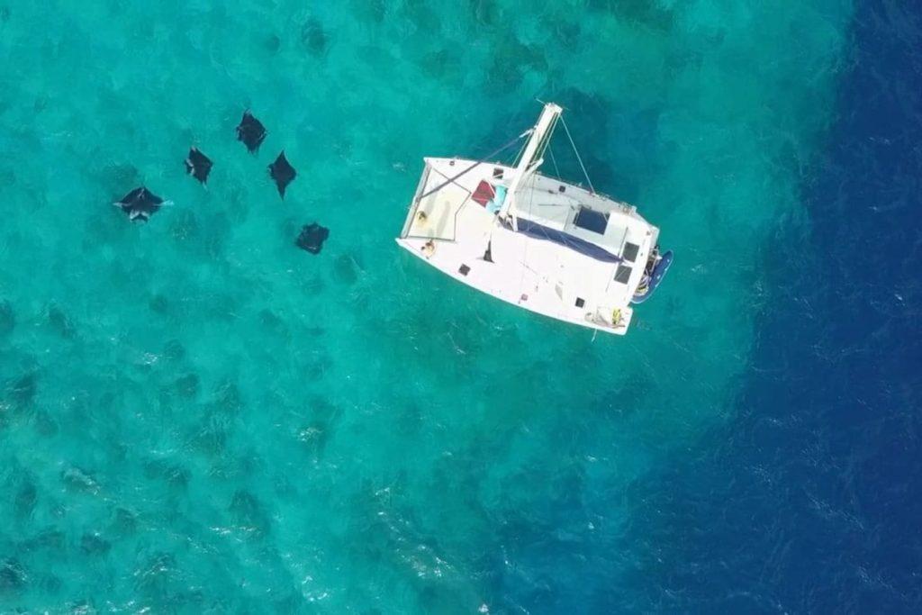 sailing-yacht-cingwe-dron