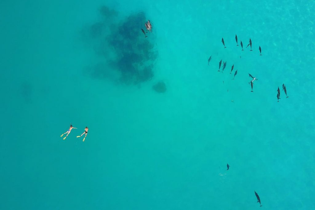 sailing-yacht-cingwe-from-above