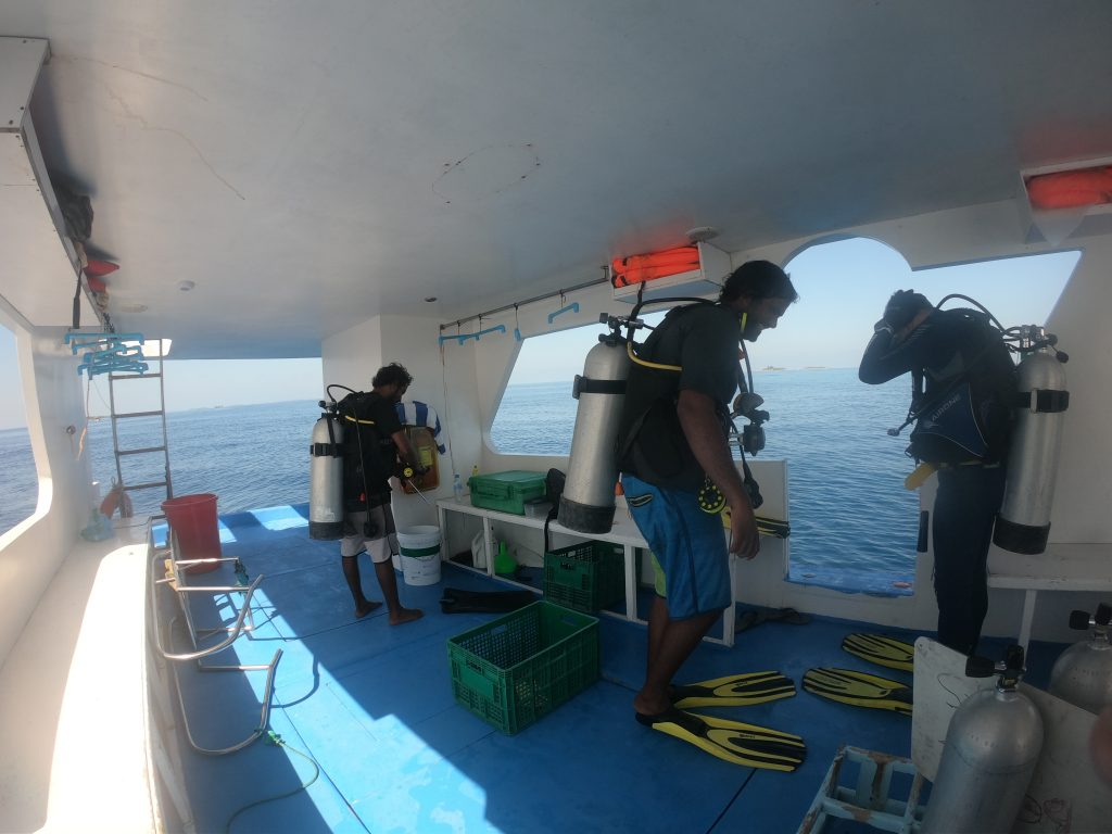 dhangethi diving divers prepare
