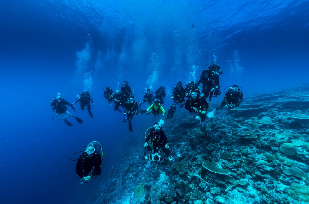 dhangethi diving divers group